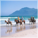 Horse-riding-on-Noordhoek-Beach