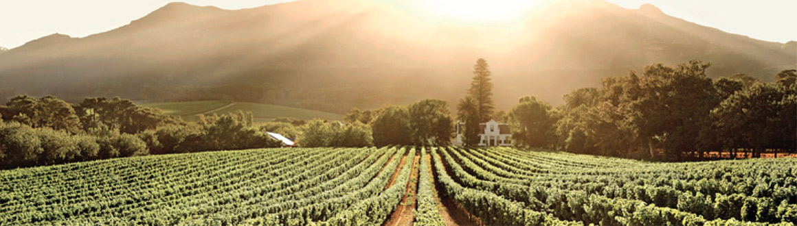 constantia-valley-helicopter-trips